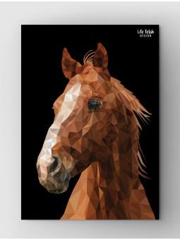 Koń Wild Black
