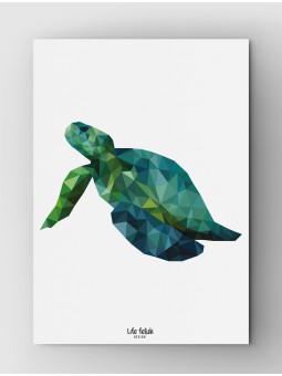 Żółw Wild